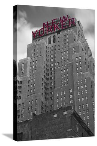 New Yorker-Moises Levy-Stretched Canvas Print