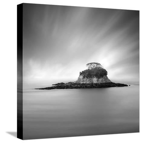 Rat Island 2-Moises Levy-Stretched Canvas Print