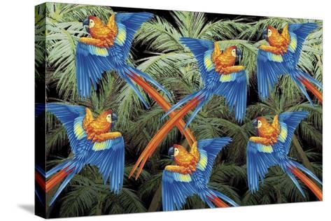Palm Parrot-James Mazzotta-Stretched Canvas Print
