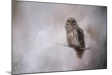 Winter Owl-Jai Johnson-Mounted Giclee Print
