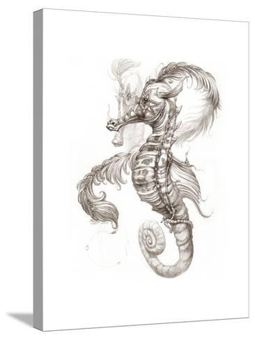 Aquatic Seahorse Pencil-Jeff Haynie-Stretched Canvas Print