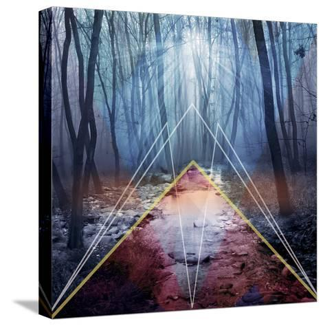 Forest-Mark Ashkenazi-Stretched Canvas Print