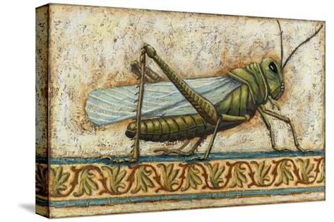 Grasshopper 2-Rachel Paxton-Stretched Canvas Print