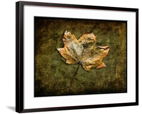 Metallic Leaf 1-LightBoxJournal-Framed Art Print