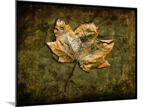 Metallic Leaf 1-LightBoxJournal-Mounted Giclee Print