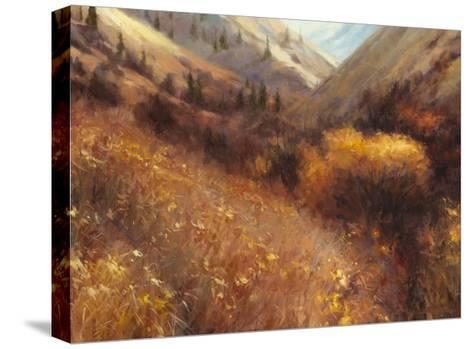 Flecks of Gold-Steve Henderson-Stretched Canvas Print