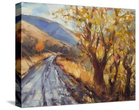 After an Autumn Rain-Steve Henderson-Stretched Canvas Print