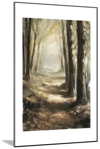 Forest Path Oil-Steve Henderson-Mounted Giclee Print