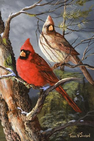 Winter's Perch 2-Trevor V. Swanson-Stretched Canvas Print