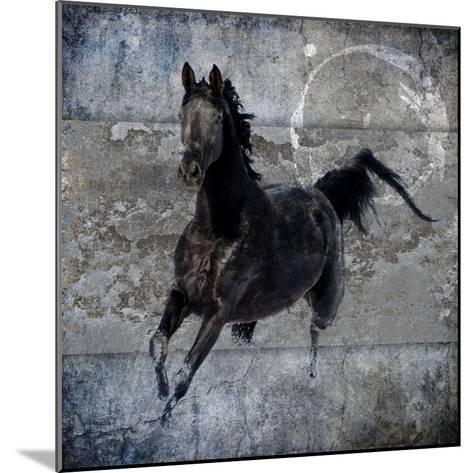 Black Mare 1-LightBoxJournal-Mounted Giclee Print