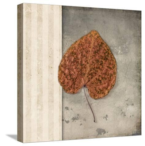 Lodge Leaf 2-LightBoxJournal-Stretched Canvas Print