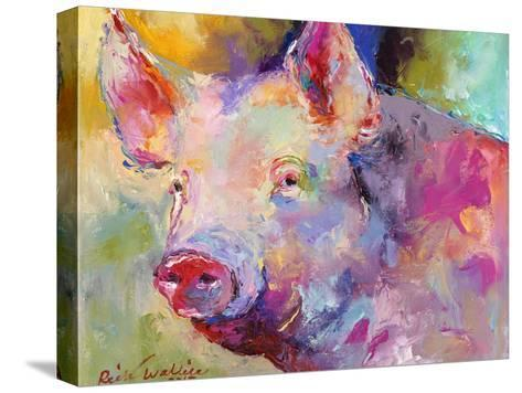 Piggy-Richard Wallich-Stretched Canvas Print