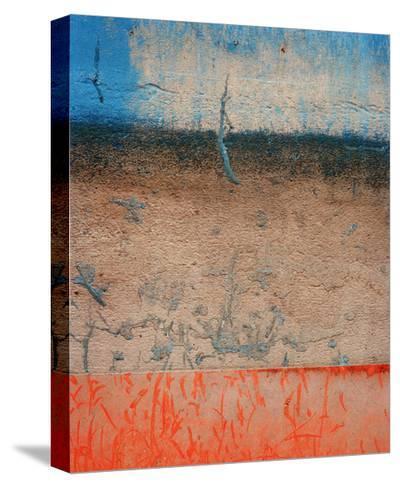 Eastern Seaboard II-Rob Lang-Stretched Canvas Print