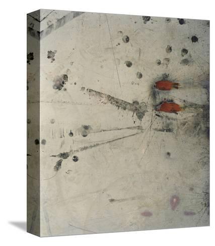 Katrina 10-Rob Lang-Stretched Canvas Print