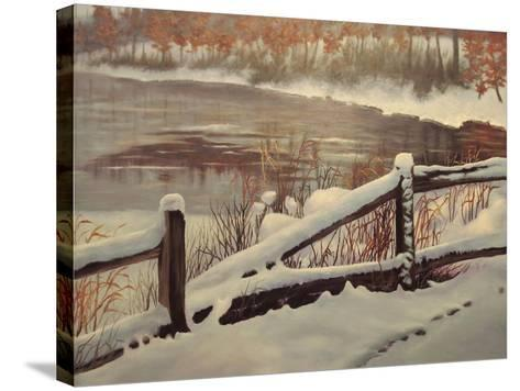 Winter Magic-Rusty Frentner-Stretched Canvas Print