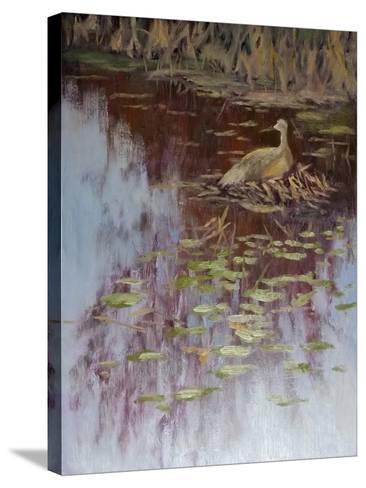 Crane-Rusty Frentner-Stretched Canvas Print