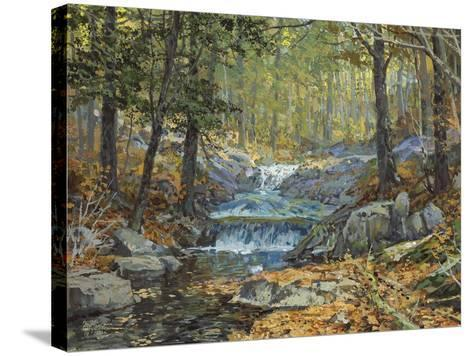 Glen Creek Waterfalls-Peter Snyder-Stretched Canvas Print