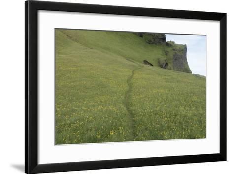 A Footpath Above the Cliff at Reynisfjara-Bill Marr-Framed Art Print