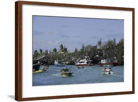 The Busy Harbor at Puerto Ayora, Galapagos Islands-Jad Davenport-Framed Art Print