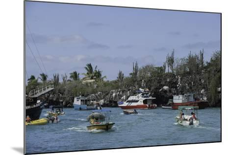 The Busy Harbor at Puerto Ayora, Galapagos Islands-Jad Davenport-Mounted Photographic Print