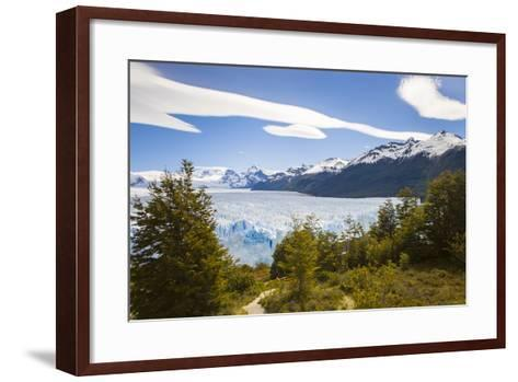 A View Looking Through the Trees of the Top of the Perito Moreno Glacier in Argentina-Mike Theiss-Framed Art Print