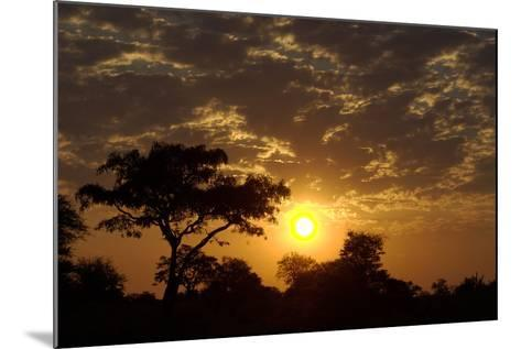 Sunset, Upper Vumbura Plains, Botswana-Anne Keiser-Mounted Photographic Print