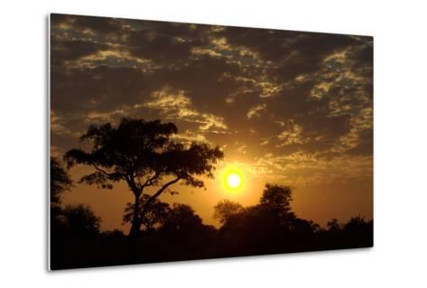 Sunset, Upper Vumbura Plains, Botswana-Anne Keiser-Metal Print