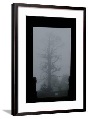 Misty Forest of Emei Shan-Tyrone Turner-Framed Art Print