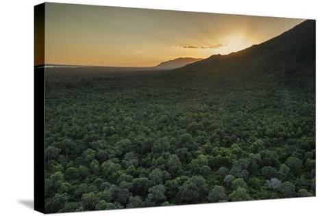 Aerial View of the Lower Zambezi Valley Escarpment in Zambia-Matthew Hood-Stretched Canvas Print