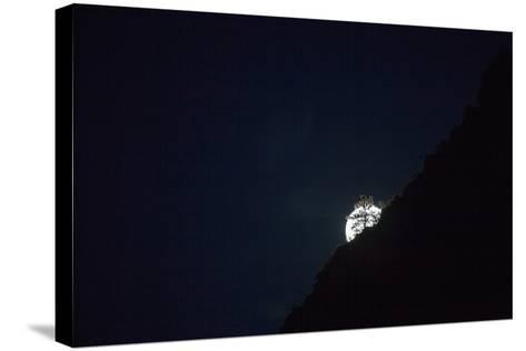 The Full Moon Rising in Zion National Park-Ben Horton-Stretched Canvas Print