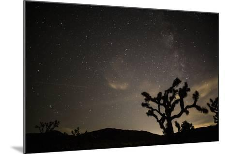 The Star-Filled Night Sky over Lost Horse Valley in Joshua Tree National Park-Kent Kobersteen-Mounted Photographic Print