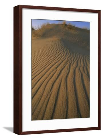 Sand Dune with Ripples Created by Wind-Norbert Rosing-Framed Art Print