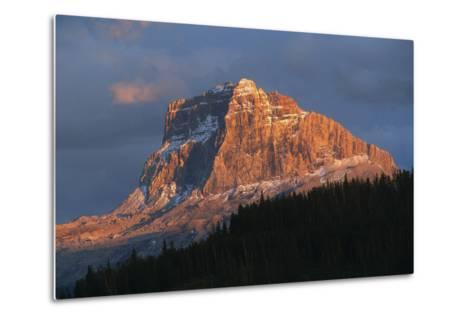 Scenic View of Mountain with Silhouette of Trees-Cagan Sekercioglu-Metal Print