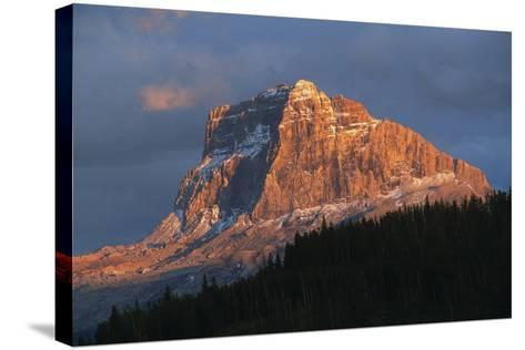 Scenic View of Mountain with Silhouette of Trees-Cagan Sekercioglu-Stretched Canvas Print