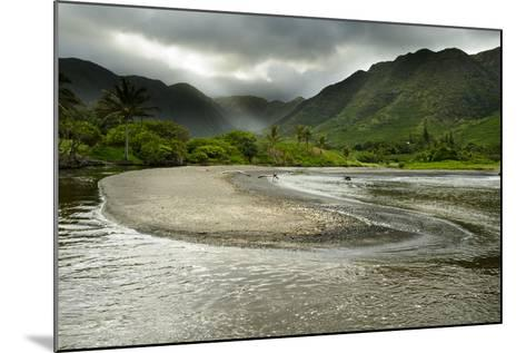 Fresh Water from Halawa Valley Empties into the Pacific Ocean on the Shore of Molokai-Jonathan Kingston-Mounted Photographic Print