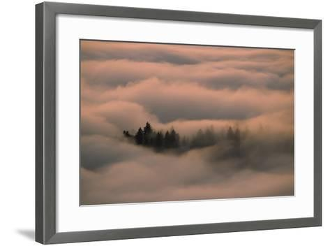 Islands of Trees Peaking Out of Thick Layer of Clouds in the Valley-Norbert Rosing-Framed Art Print