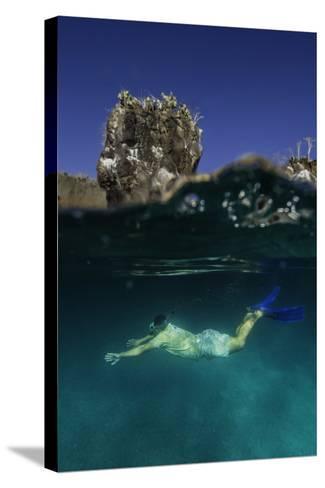 A Snorkeler Swimming Underwater-Jad Davenport-Stretched Canvas Print