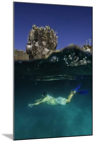 A Snorkeler Swimming Underwater-Jad Davenport-Mounted Photographic Print