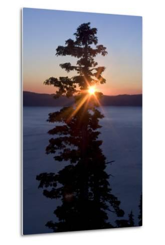 Silhouette of Coniferous Tree Near Crater Lake in Crater Lake National Park, Oregon-Philip Schermeister-Metal Print