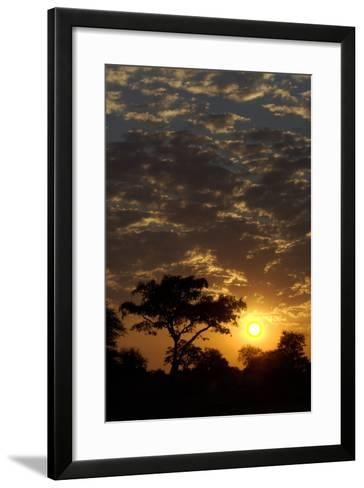 Sunset, Upper Vumbura Plains, Botswana-Anne Keiser-Framed Art Print