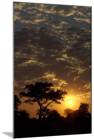 Sunset, Upper Vumbura Plains, Botswana-Anne Keiser-Mounted Photographic Print
