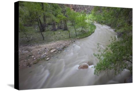 Virgin River Running Through Zion National Park, Utah-John Burcham-Stretched Canvas Print