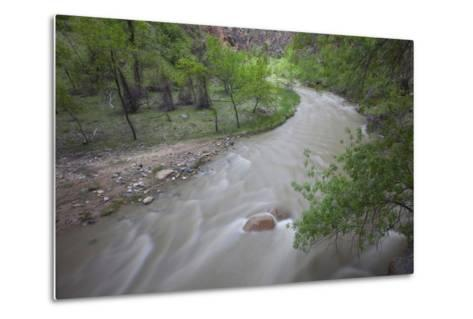 Virgin River Running Through Zion National Park, Utah-John Burcham-Metal Print