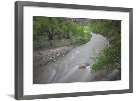 Virgin River Running Through Zion National Park, Utah-John Burcham-Framed Art Print