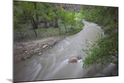 Virgin River Running Through Zion National Park, Utah-John Burcham-Mounted Photographic Print