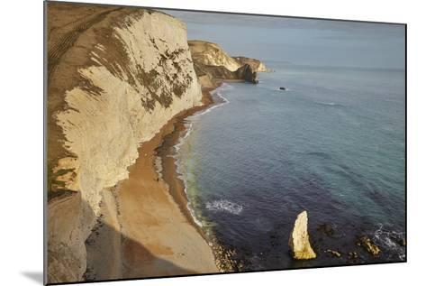 The Beach and Chalk Cliffs around Durdle Door, in the Jurassic Coast World Heritage Site-Nigel Hicks-Mounted Photographic Print