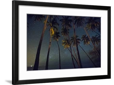 Starry Night in the Kapuaiwa Coconut Grove-Jonathan Kingston-Framed Art Print