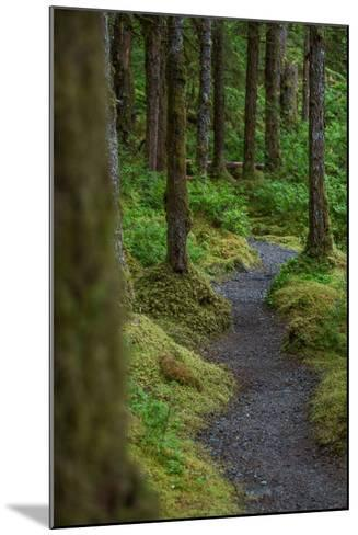 A Trail Leads Through the Forest in Glacier Bay National Park-Erika Skogg-Mounted Photographic Print