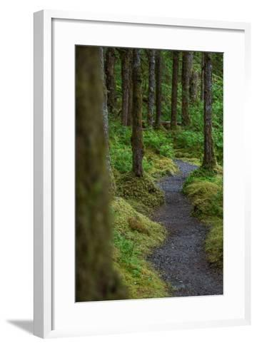 A Trail Leads Through the Forest in Glacier Bay National Park-Erika Skogg-Framed Art Print