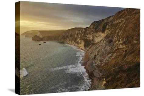 The Beach and Chalk Cliffs around Durdle Door, in the Jurassic Coast World Heritage Site-Nigel Hicks-Stretched Canvas Print